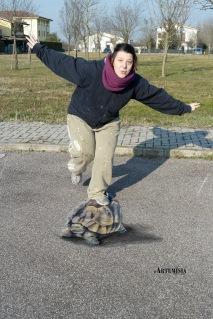 Turtle - 3D
