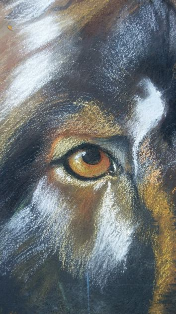 Detail to my wolf!