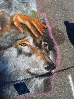 Dettaglio del lupo.